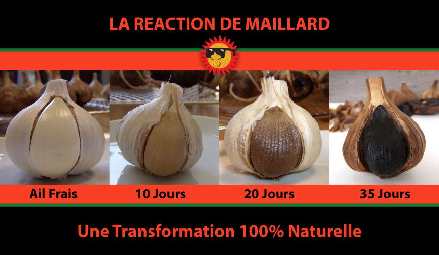 Transformation-francais