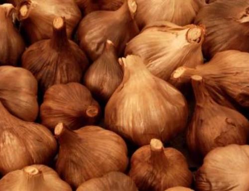 Black Garlic: your best health allied…(French)